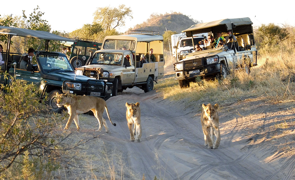 Join us in Namibia - Exclusive trips
